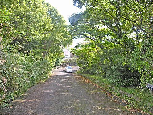 土地-伊東市富戸 前面道路は幅員が約5.0mあり、ゆったりとしております。