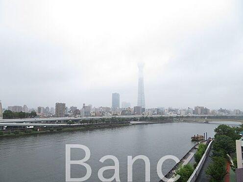 中古マンション-台東区今戸2丁目 眺望