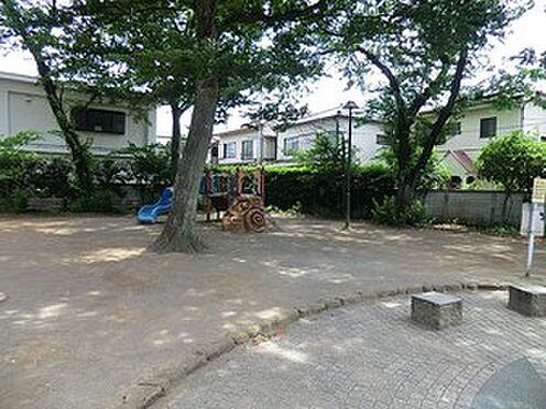 アパート-杉並区清水3丁目 周辺環境:桃井公園