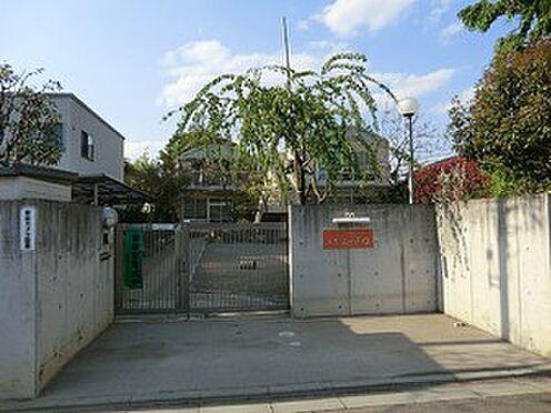 アパート-中野区鷺宮5丁目 周辺環境:とちの木保育園
