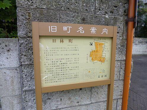 アパート-文京区千石4丁目 【公園】千石緑地公園まで287m