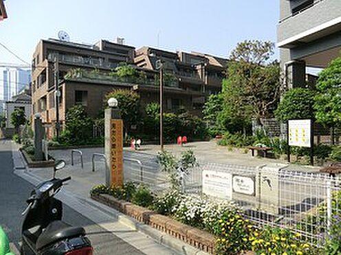 マンション(建物一部)-新宿区西新宿5丁目 周辺環境:きたしん公園