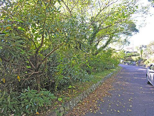 土地-伊東市富戸 自然公園法特別区域内ですので自然を大切にしなければなりません。