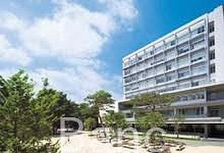 中古マンション-世田谷区成城4丁目 私立成城大学 徒歩22分。 1720m