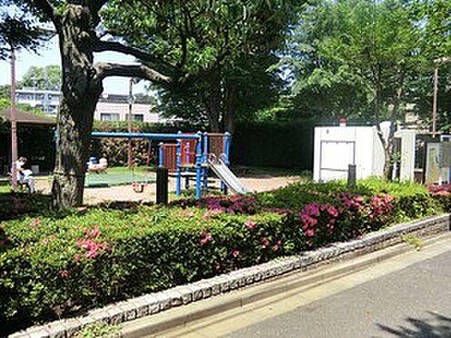 マンション(建物全部)-世田谷区池尻4丁目 周辺環境:駒場児童遊園