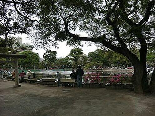 アパート-目黒区目黒本町4丁目 周辺環境:清水池公園