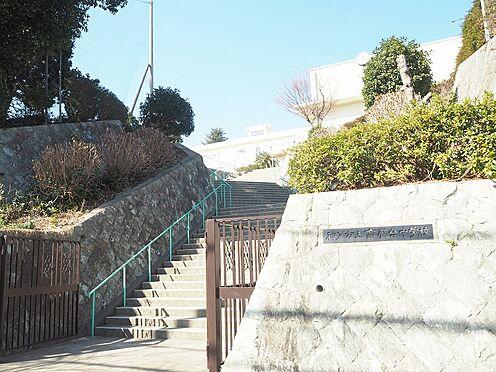 マンション(建物一部)-神戸市長田区五位ノ池町2丁目 周辺