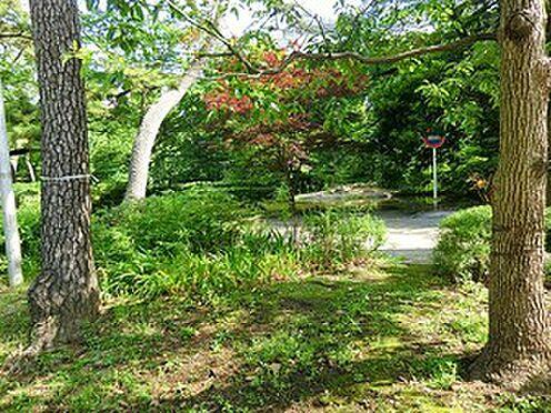 マンション(建物一部)-港区赤坂6丁目 周辺環境:清水谷公園