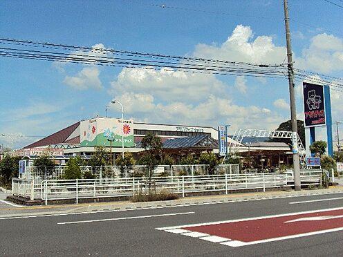 アパート-彦根市新町 ホームセンターアヤハディオ 南彦根店(2030m)