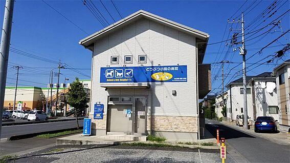 中古一戸建て-北本市中丸3丁目 どうぶつ小鳥の病院ワイズ(397m)