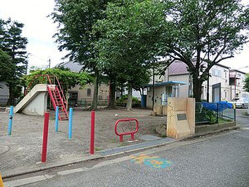 マンション(建物全部)-杉並区阿佐谷北4丁目 周辺環境:すぎのこ公園