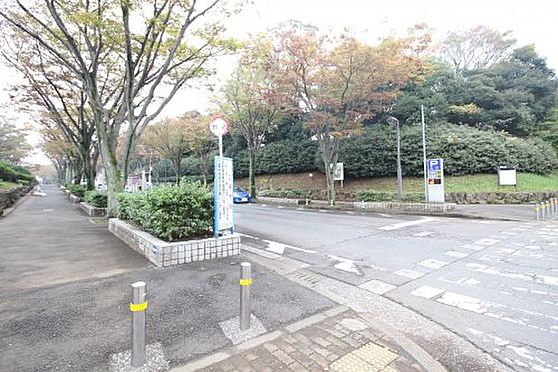 戸建賃貸-横須賀市上町4丁目 【公園】不入斗運動公園まで509m