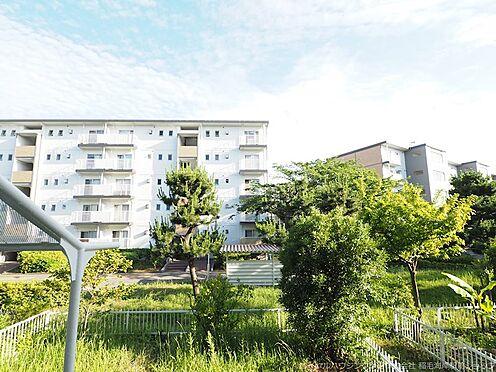 区分マンション-千葉市美浜区高浜3丁目 前面棟との距離があり開放感があります。