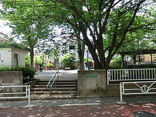 マンション(建物全部)-目黒区駒場1丁目 富ヶ谷公園
