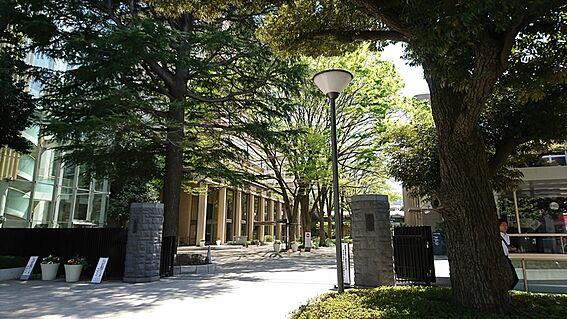 アパート-練馬区旭丘1丁目 武蔵大学 江古田キャンパス