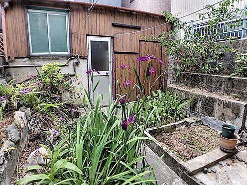 戸建賃貸-名古屋市南区六条町3丁目 家庭菜園なども楽しめますね♪