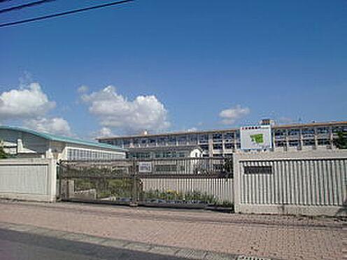 建物全部その他-鹿児島市和田3丁目 和田小学校 徒歩 約5分(約350m)