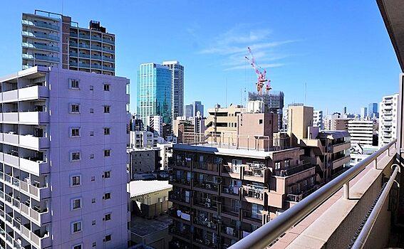 中古マンション-港区三田5丁目 バルコニーからの眺望、白金方面を望む