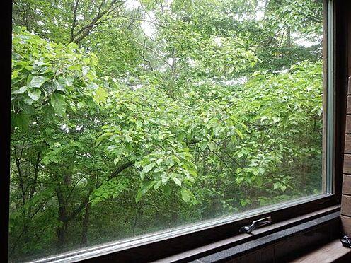 戸建賃貸-北佐久郡軽井沢町大字軽井沢 窓がついていて緑を眺めながらバスタイムが楽しめます。