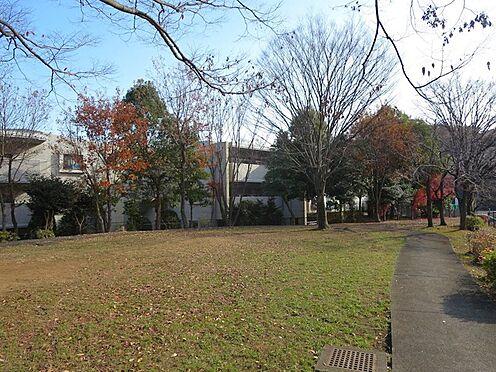 中古マンション-八王子市松木 目の前には川端公園があり小さなお子様の遊び場として最適です。