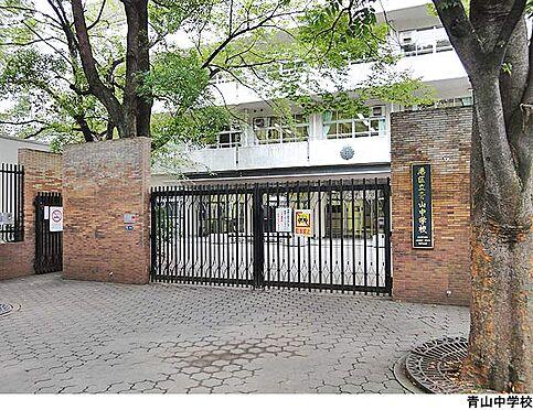 マンション(建物一部)-港区南青山2丁目 青山中学校