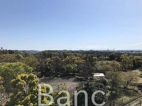 中古マンション-横浜市戸塚区俣野町 全面さえぎるものがなく開けた眺望です