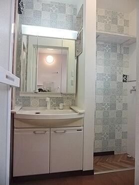 建物全部その他-大津市富士見台 三面鏡にハンドシャワー付き、使いやすい洗面台