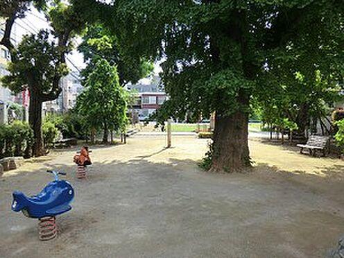 マンション(建物全部)-文京区弥生1丁目 大観音児童遊園