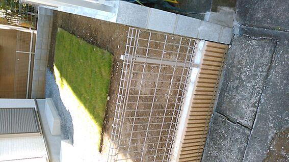 新築一戸建て-上尾市上町1丁目 陽だまりのお庭