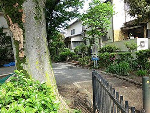 マンション(建物全部)-世田谷区千歳台1丁目 千歳台公園