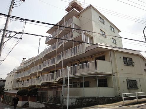 マンション(建物一部)-松戸市小金清志町2丁目 外観