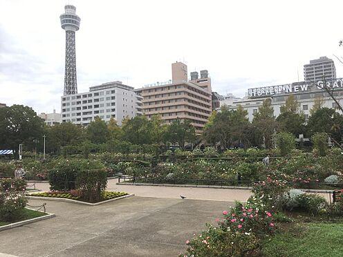 マンション(建物一部)-横浜市中区山下町 山下公園