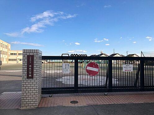新築一戸建て-名古屋市中川区新家3丁目 赤星小学校 974m 徒歩約13分