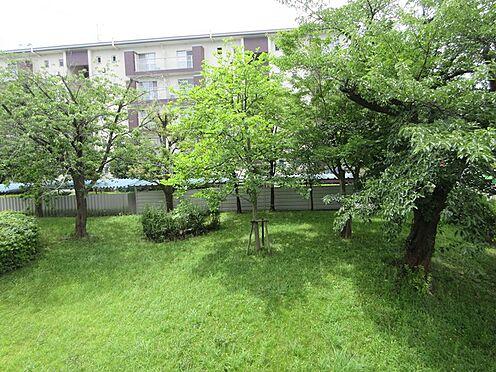 中古マンション-多摩市豊ヶ丘3丁目 南側バルコニーからの眺望