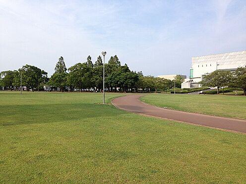 事務所(建物全部)-宮崎市神宮2丁目 総合文化公園