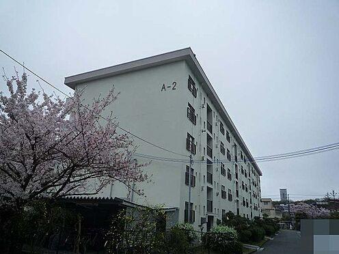 中古マンション-吹田市古江台5丁目 その他