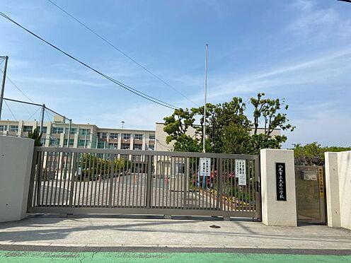 マンション(建物一部)-八尾市若林町1丁目 大正小学校 距離約1200m