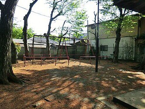 アパート-中野区鷺宮5丁目 そろの木公園