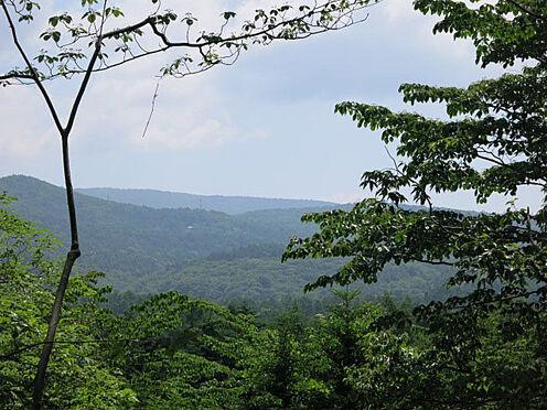 土地-北佐久郡軽井沢町大字軽井沢 360度見渡す限り緑が広がります。こんな場所があったのかと思わせる大自然です。