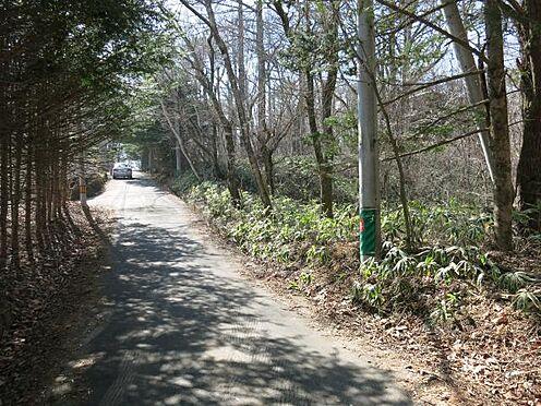 土地-北佐久郡軽井沢町大字長倉 道路は緩やかに東へ下っています。