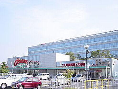 アパート-和歌山市塩屋1丁目 【スーパー】オークワ本社中島店まで1025m