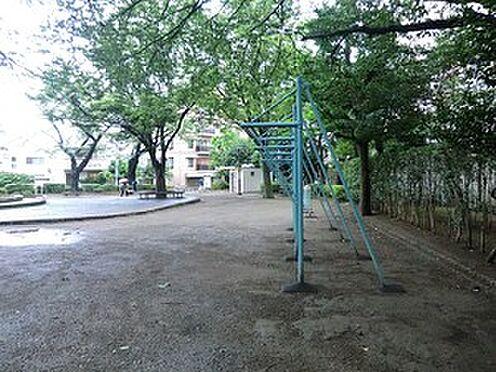 マンション(建物全部)-世田谷区下馬6丁目 周辺環境:南原公園