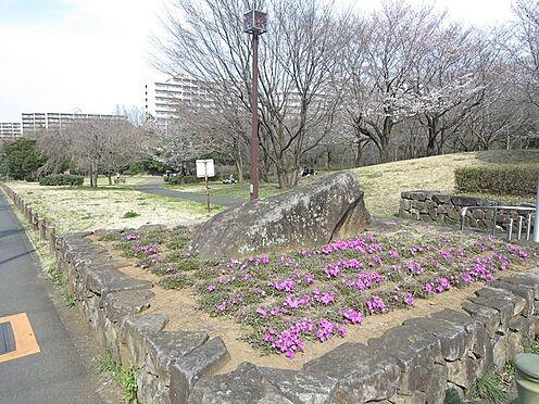 区分マンション-八王子市下柚木3丁目 柳沢の池公園(621m)