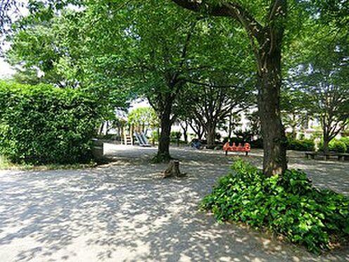 マンション(建物一部)-目黒区大橋1丁目 周辺環境:東山公園