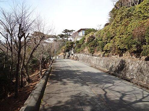 土地-熱海市上多賀 対象地前面道路の様子です。明るい道路です。