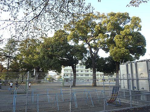 建物全部その他-厚木市温水 厚木市立南毛利小学校まで900m