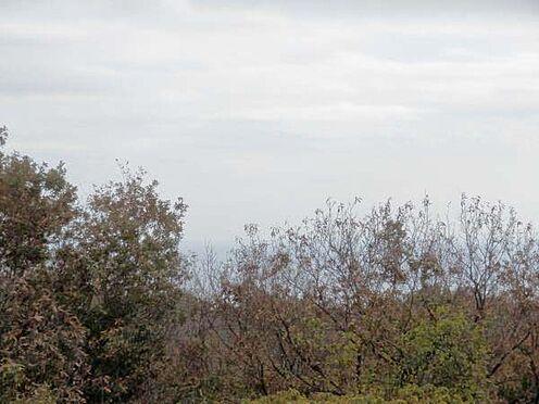 中古マンション-伊東市富戸 林の先は相模湾です。内覧希望の場合は事前にご連絡下さい。