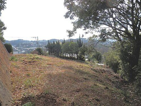 土地-足柄下郡真鶴町岩 とても日当たりの良い敷地です。