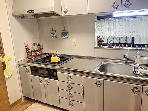 戸建賃貸-岡崎市井田町字西田 作業スペース広々・お手入れもしやすい収納完備のシステムキッチンです!