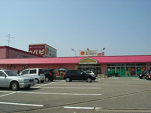 土地-富山市婦中町速星 【ショッピングセンター】ショッピングセンターパピまで251m